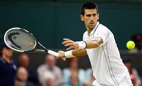 Mungkin Saja Terjadi, Final Ideal DJokovic Lawan Nadal